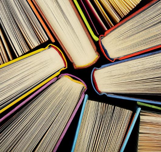 Quer saber mais sobre o Trade Marketing? Veja aqui 5 livros essenciais para você: